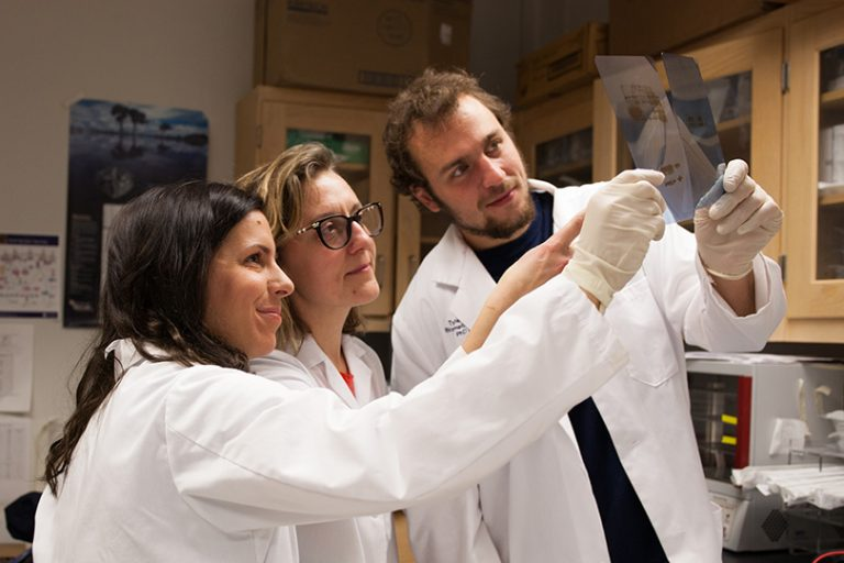photo from article AHA awards fellowship grants to three Vascular Biology Students