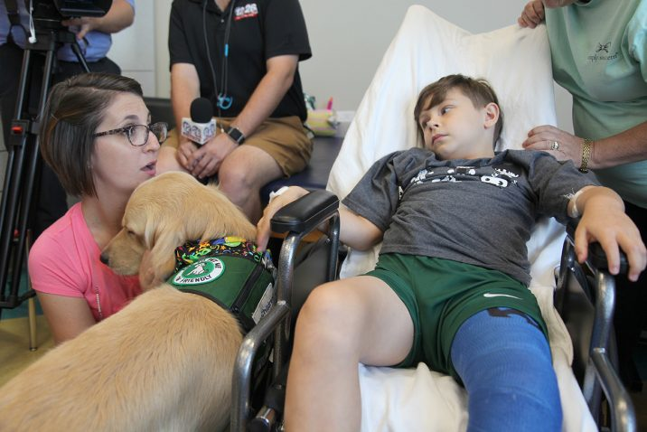 therapy dog and trainer visiting patient in hospital bed