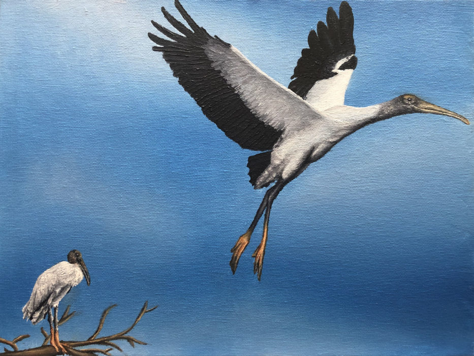 A painting of wood storks.