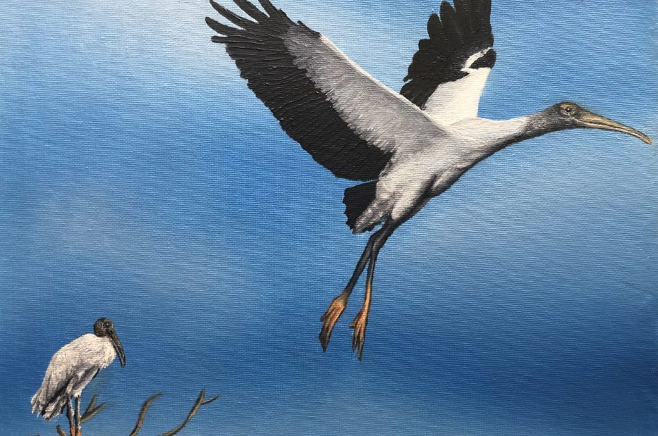 Painting of wood storks.