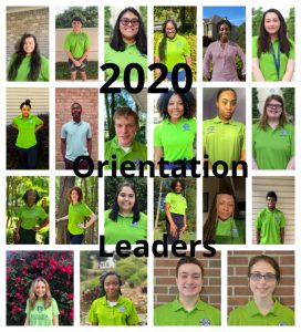 collage of all 22 orientation leaders; each is wearing a green orientation shirt