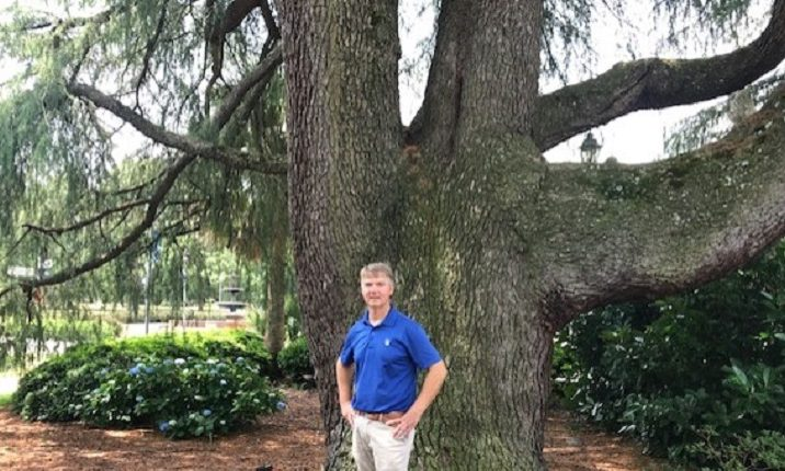 man in front of tree