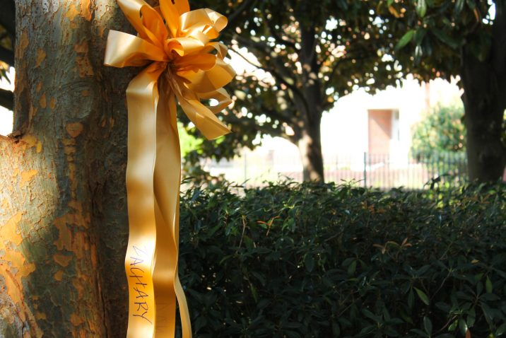 ribbon hanging on tree