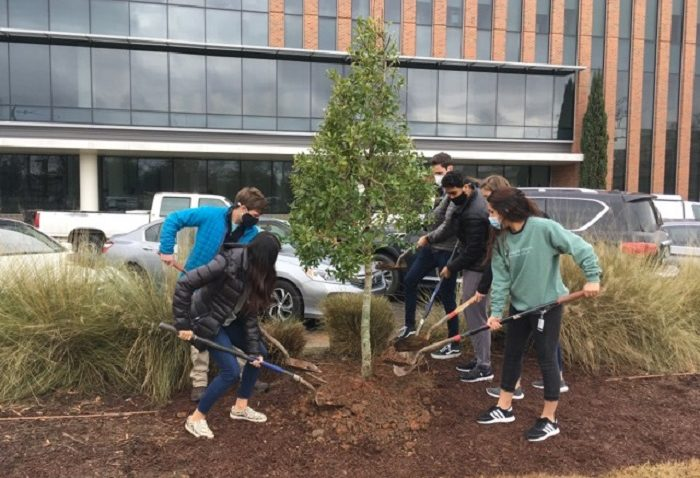 six young adults with shovels plant a tree
