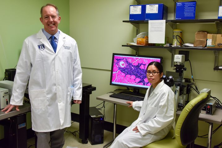 photo from article Stem cell therapy shows promise against age-related muscle loss