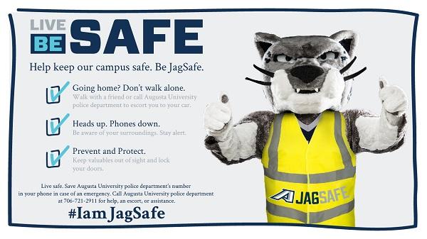 Jaguar Safety Campaign Poster