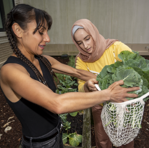 two women place a leafy vegetable into a white mesh bag