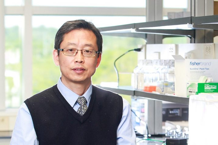 photo from article Cell reprogramming could aid spinal cord injury recovery
