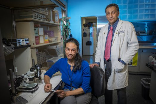 Woman in blue shirt sitting at lab bench while man in white coat and pink tie stands behind her
