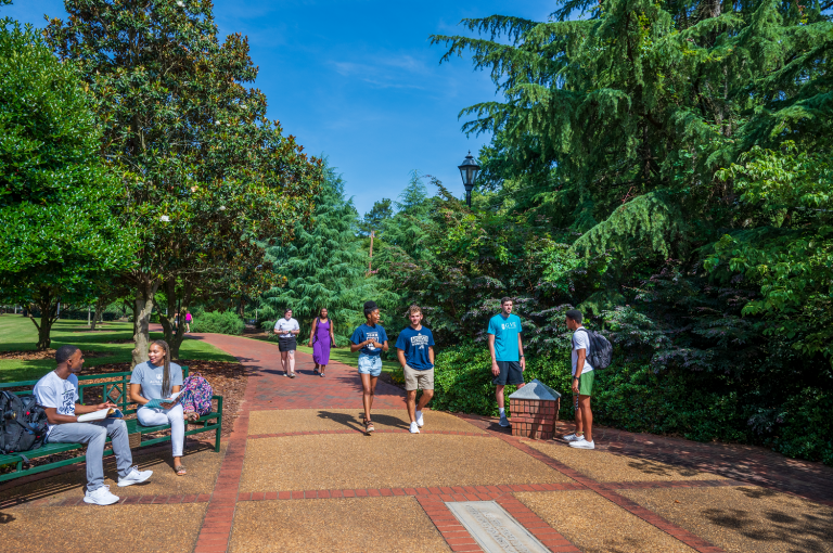students on campus, surrounded by trees