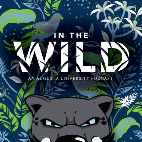 Podcast cover image of In The Wild